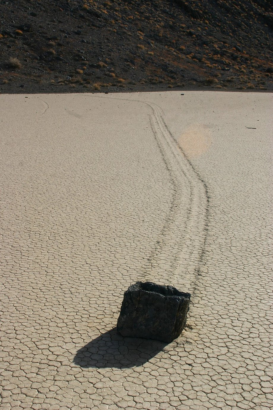 Slithering stones of Death Valley 20