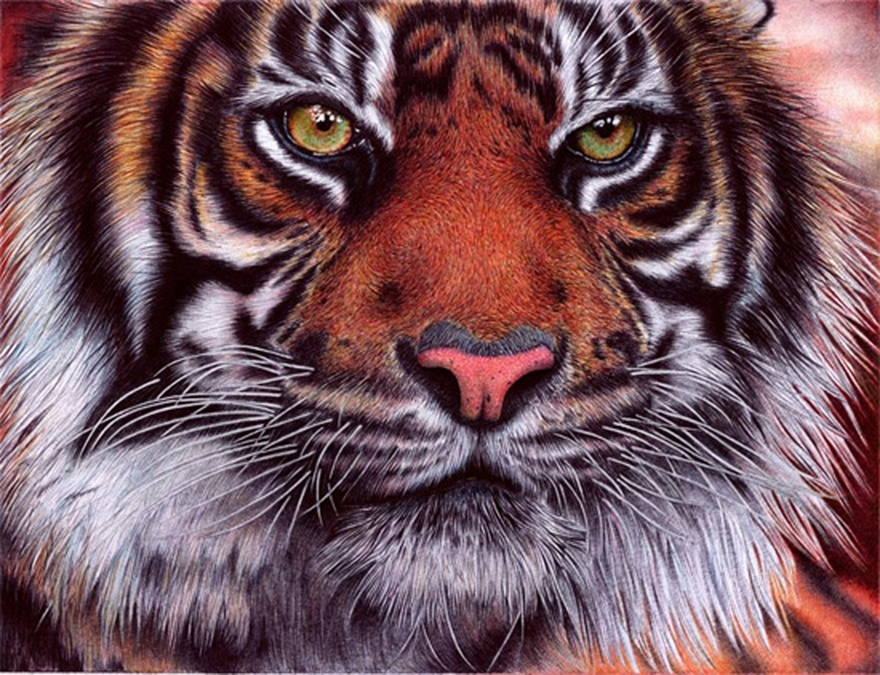 The amazing ballpoint pen drawings 04