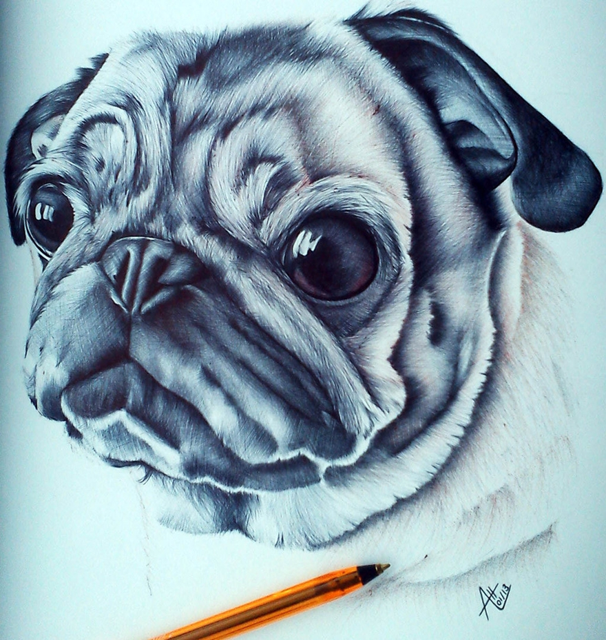 The amazing ballpoint pen drawings 09