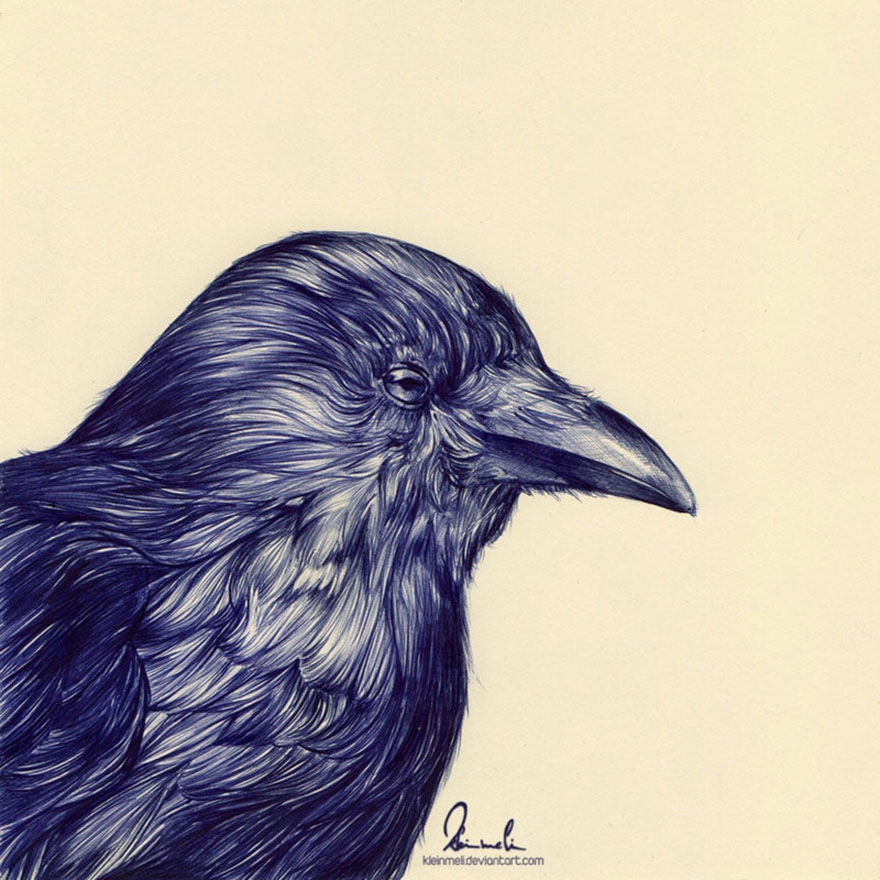 The amazing ballpoint pen drawings 29