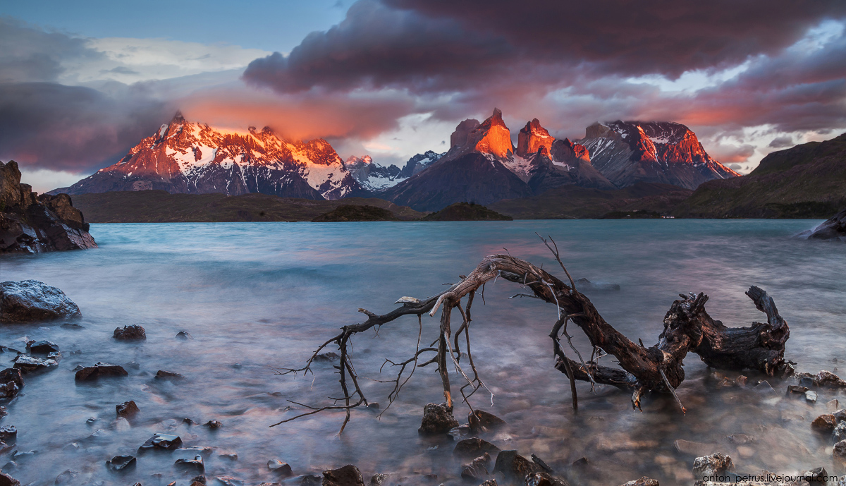 The energy of nature. Torres del Paine 07