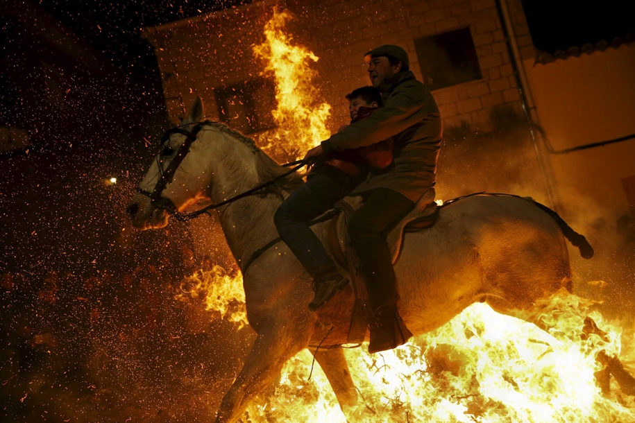 The fire horse and Day of St. Antonio 2016_15