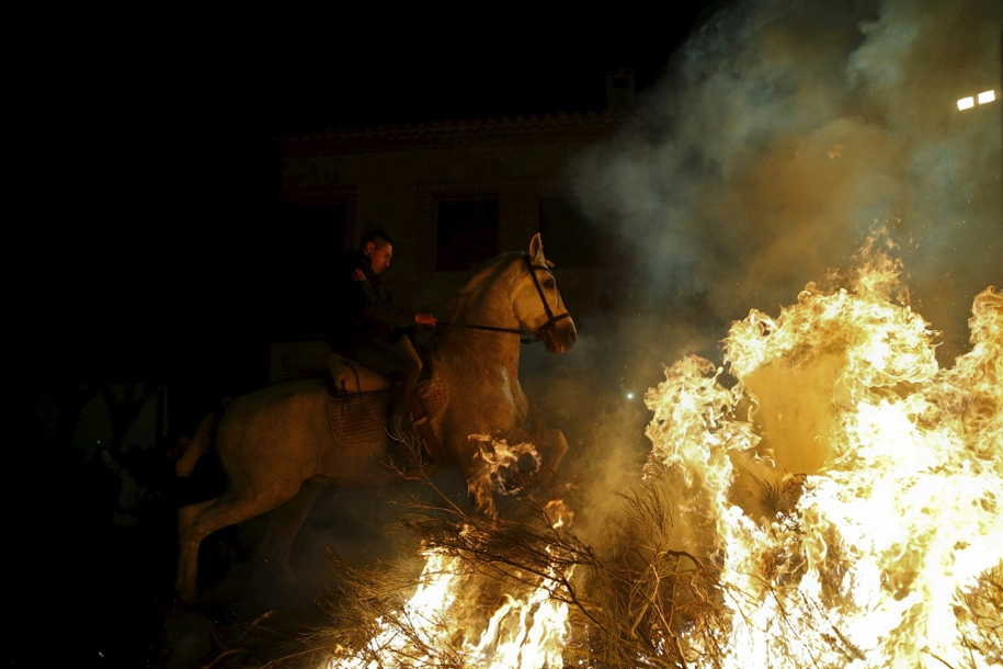 The fire horse and Day of St. Antonio 2016_16