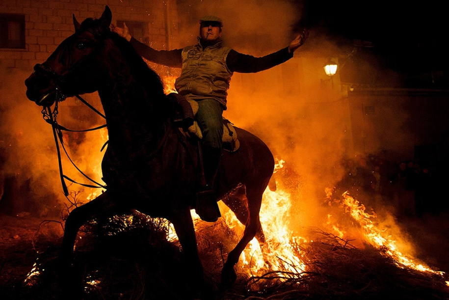 The fire horse and Day of St. Antonio 2016_20
