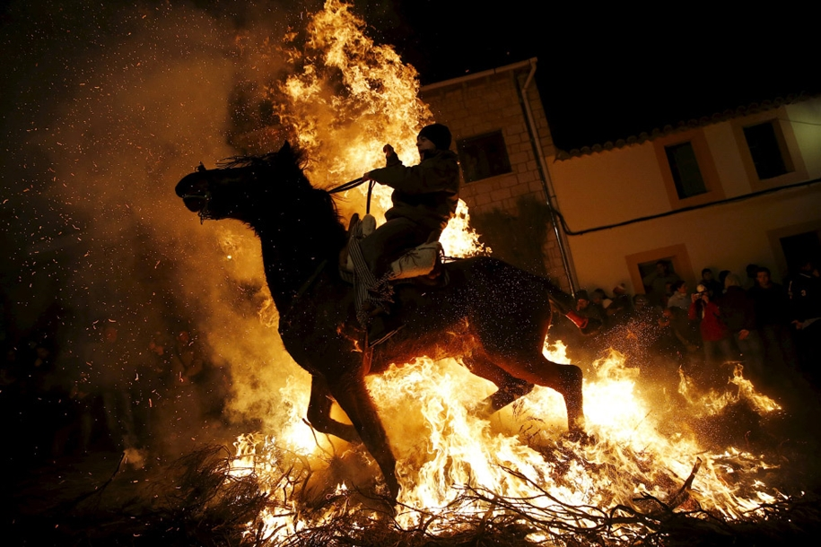 The fire horse and Day of St. Antonio 2016_21