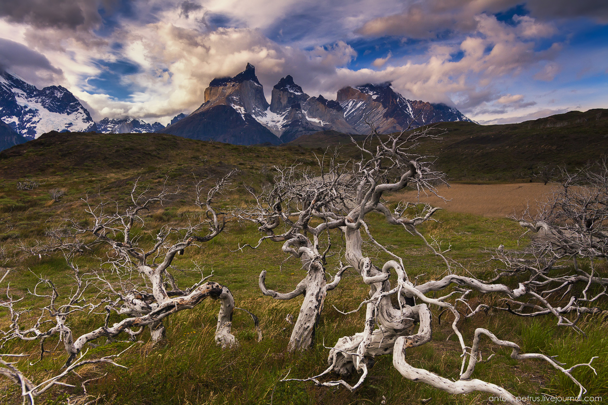 The house of the wind. Torres del Paine, Chile 11