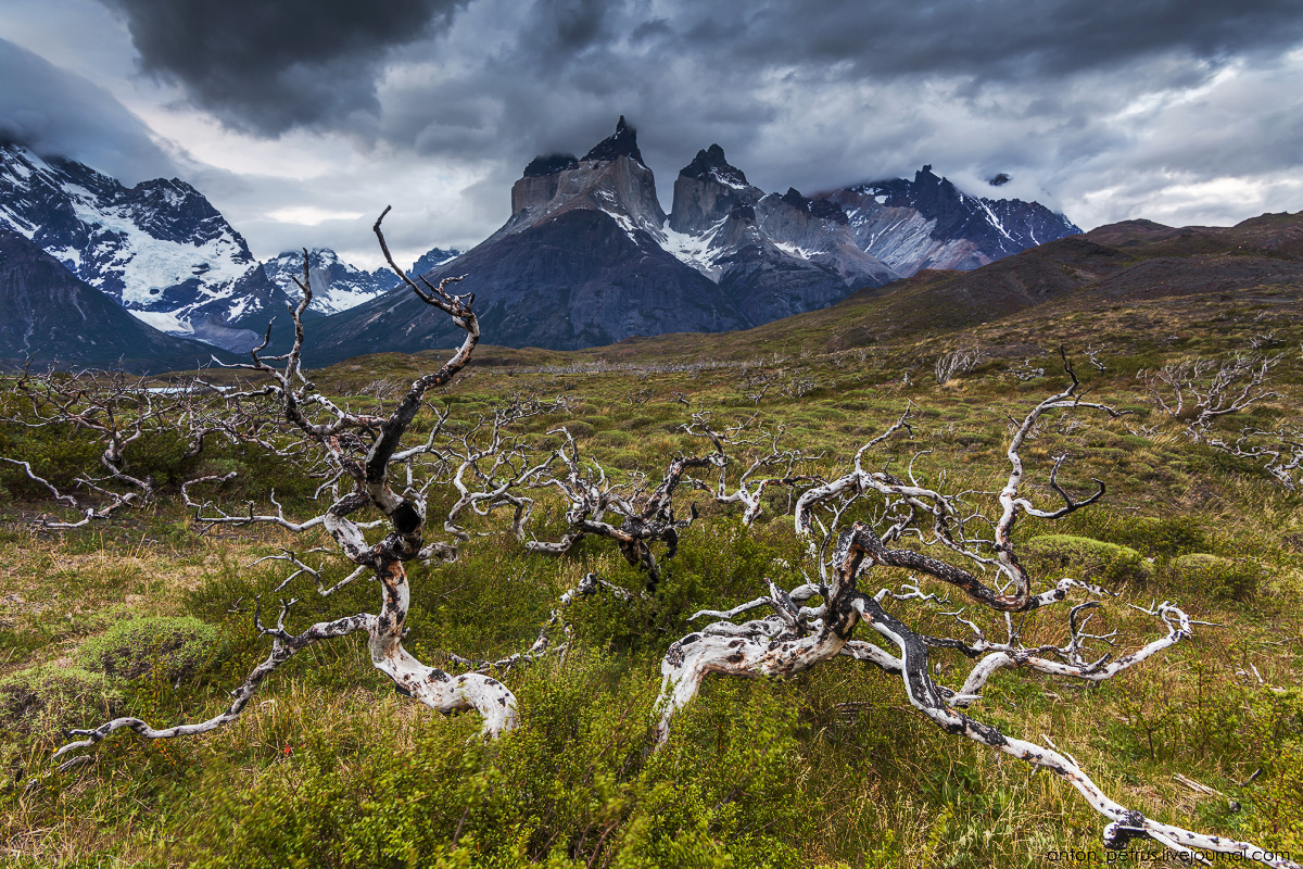 The house of the wind. Torres del Paine, Chile 15