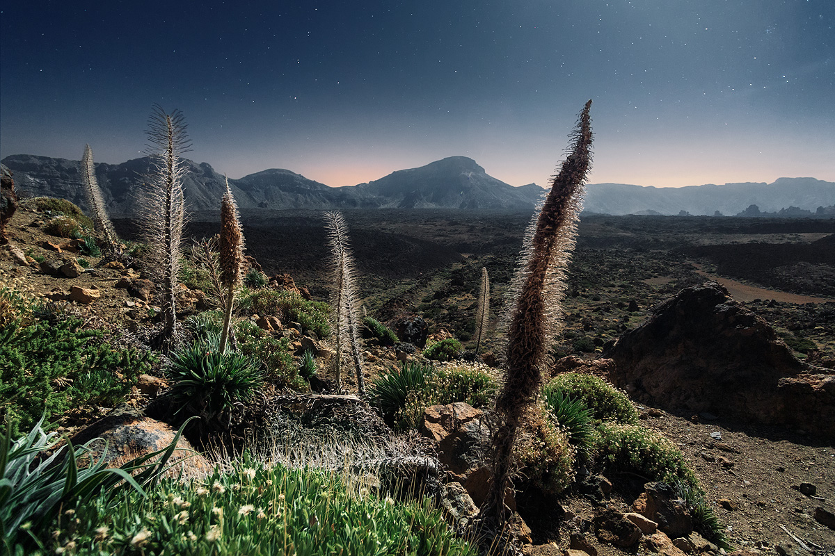 The picturesque Canary Islands, in the lens of Lucas Furlan 02