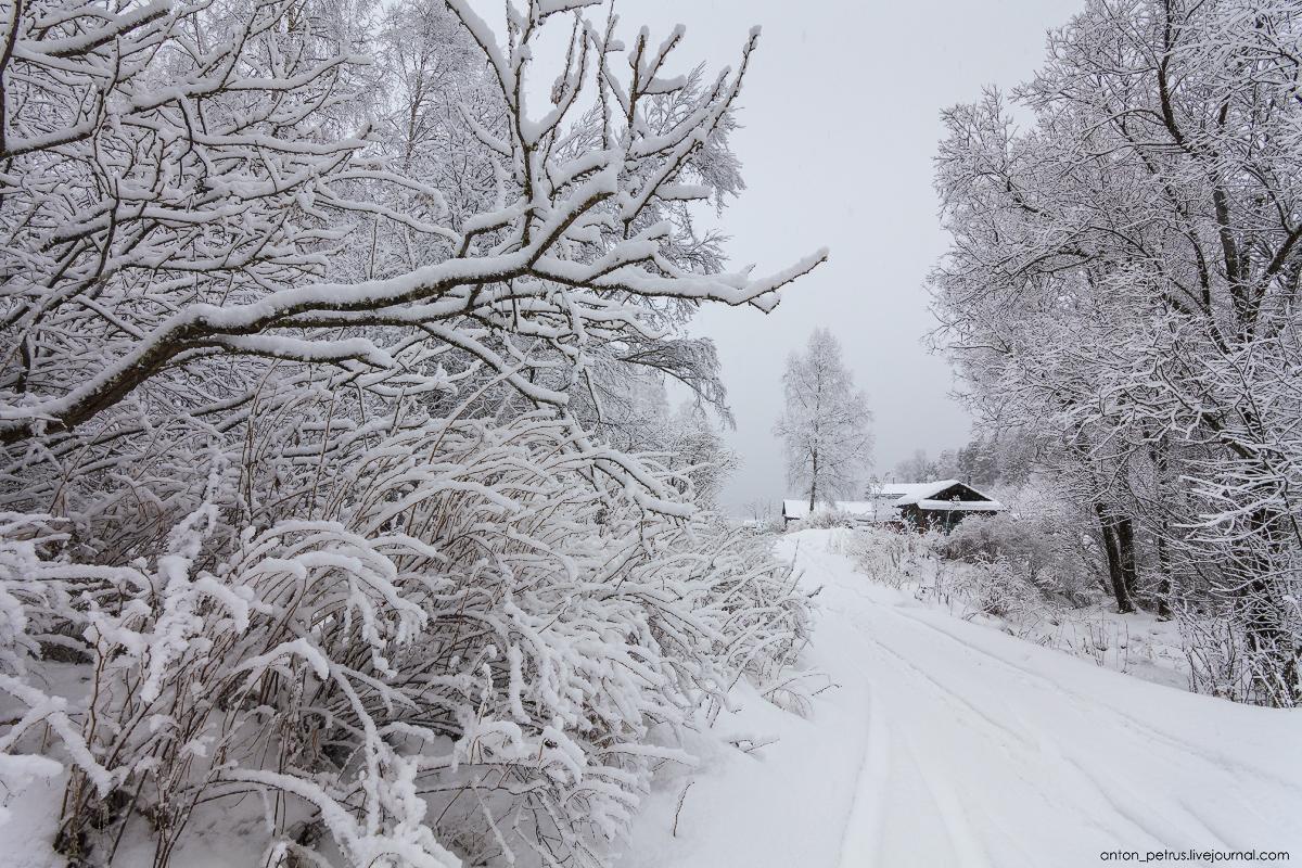 Winter on lake Teletskoye 03