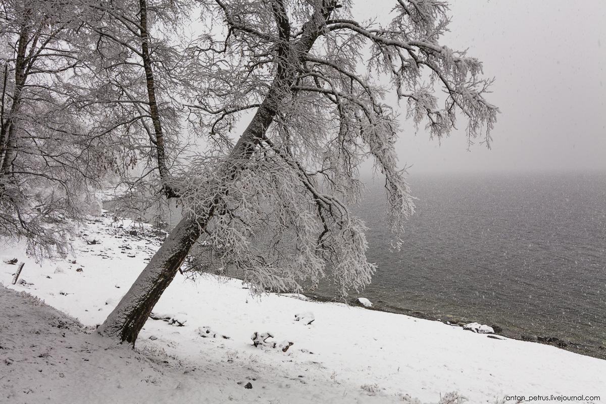 Winter on lake Teletskoye 08