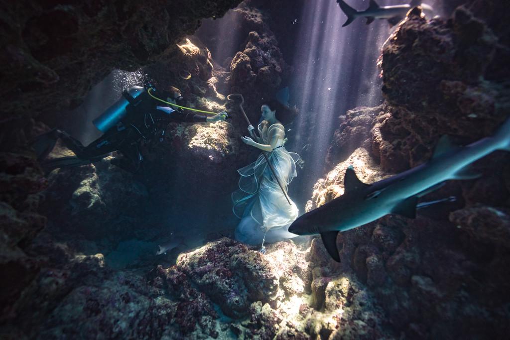 podvodnye-portrety-s-akulami-fotograf-Bendzhamin-fon-Vong_2