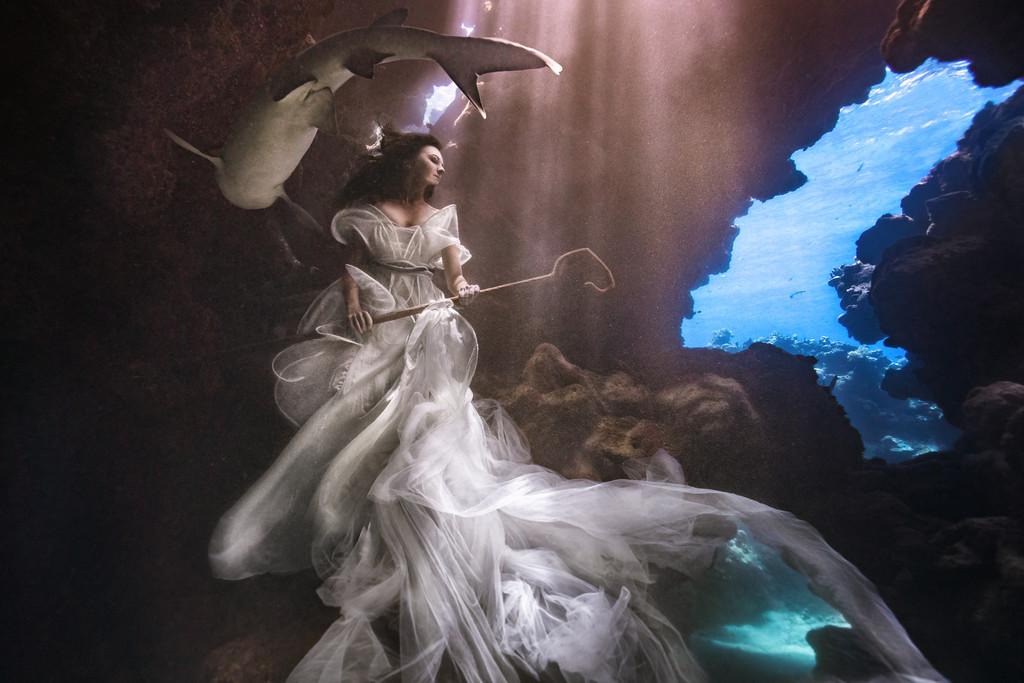 podvodnye-portrety-s-akulami-fotograf-Bendzhamin-fon-Vong_3
