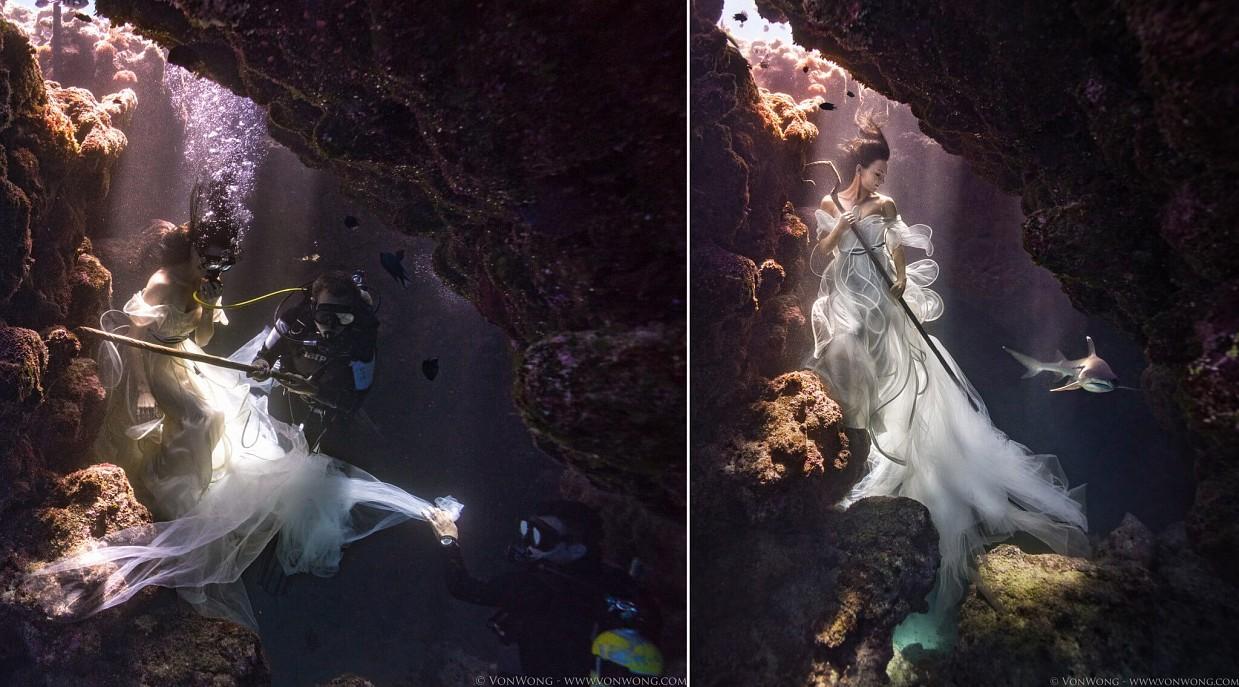podvodnye-portrety-s-akulami-fotograf-Bendzhamin-fon-Vong_4