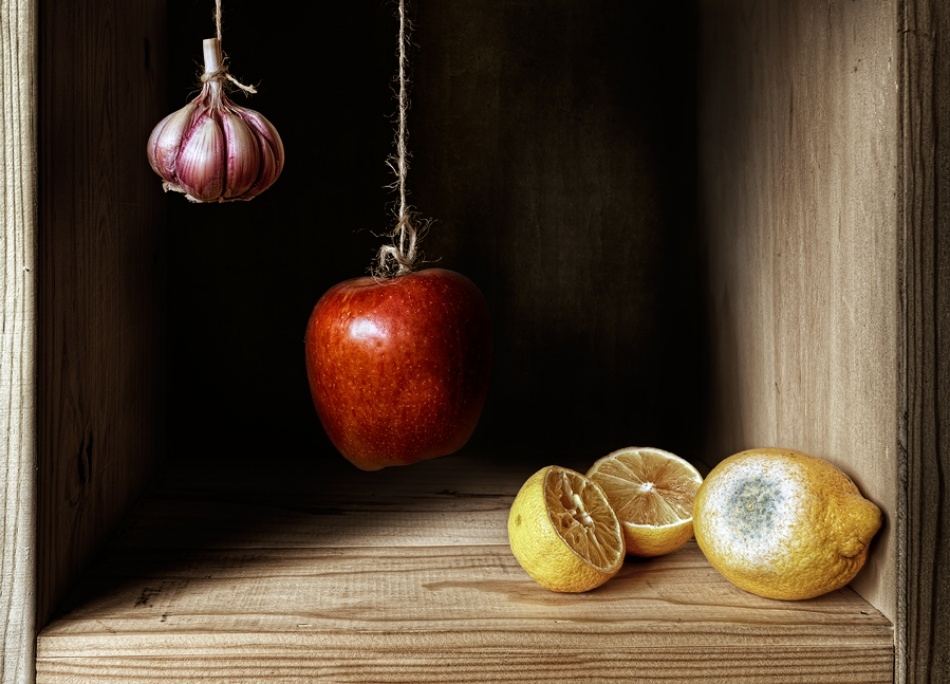 Amazing photo still lifes from Antonio Diaz 05
