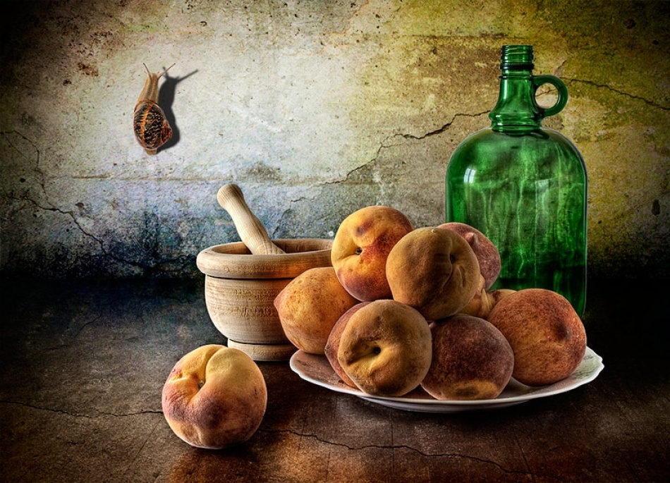 Amazing photo still lifes from Antonio Diaz 12