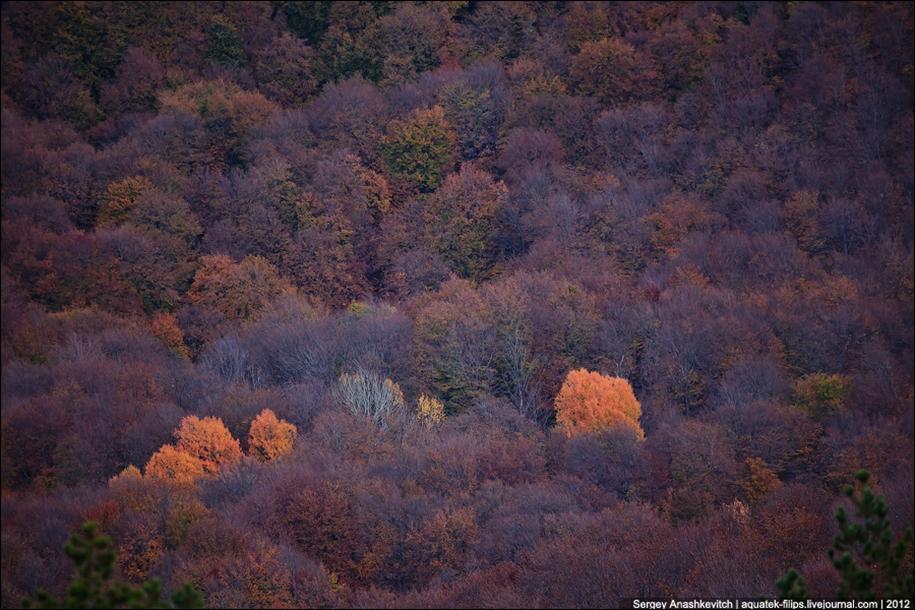 Autumn Demerdzhi 17