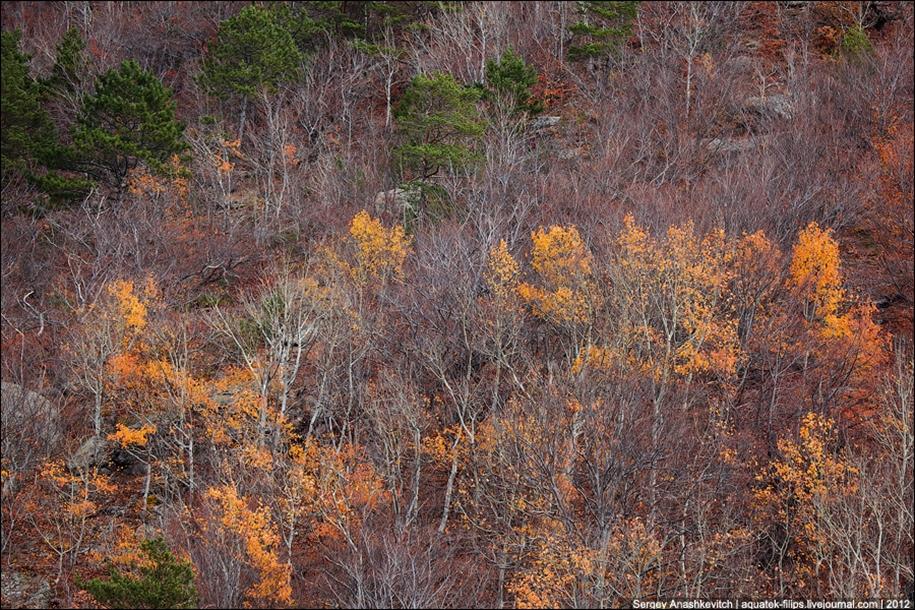 Autumn Demerdzhi 27