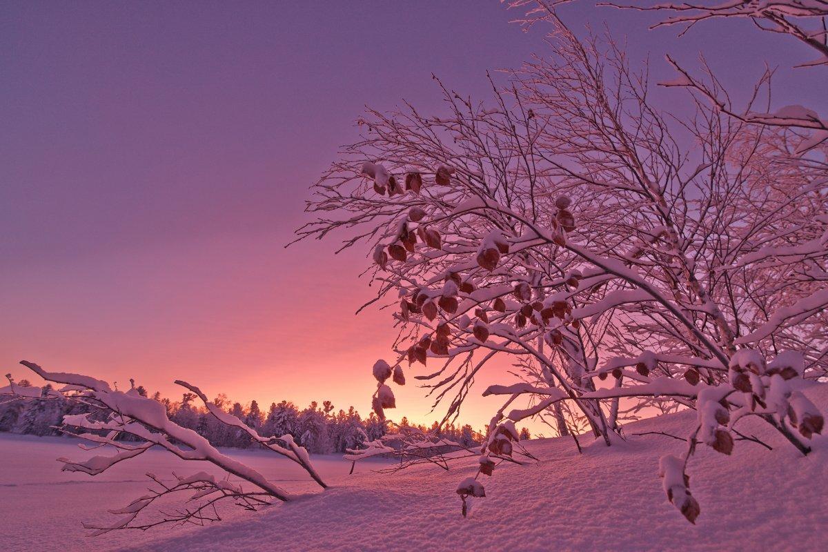Beautiful winter photos 02