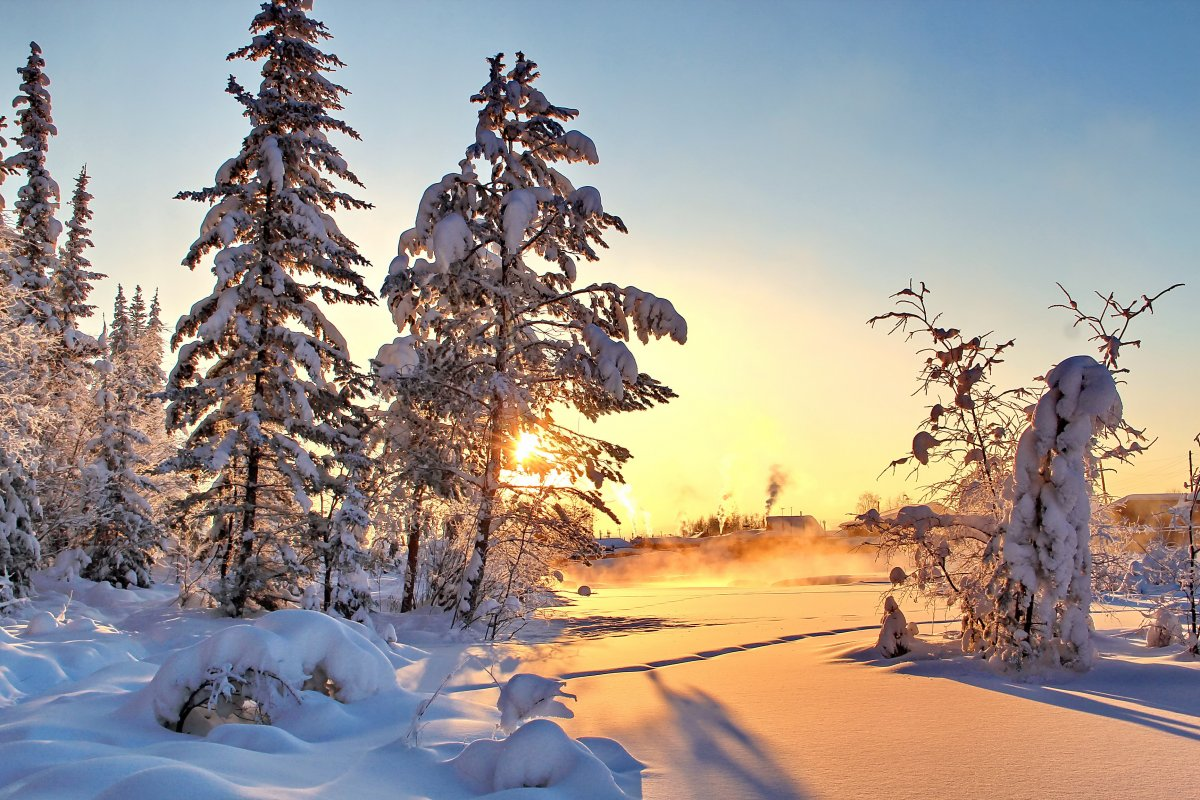 Beautiful winter photos 09