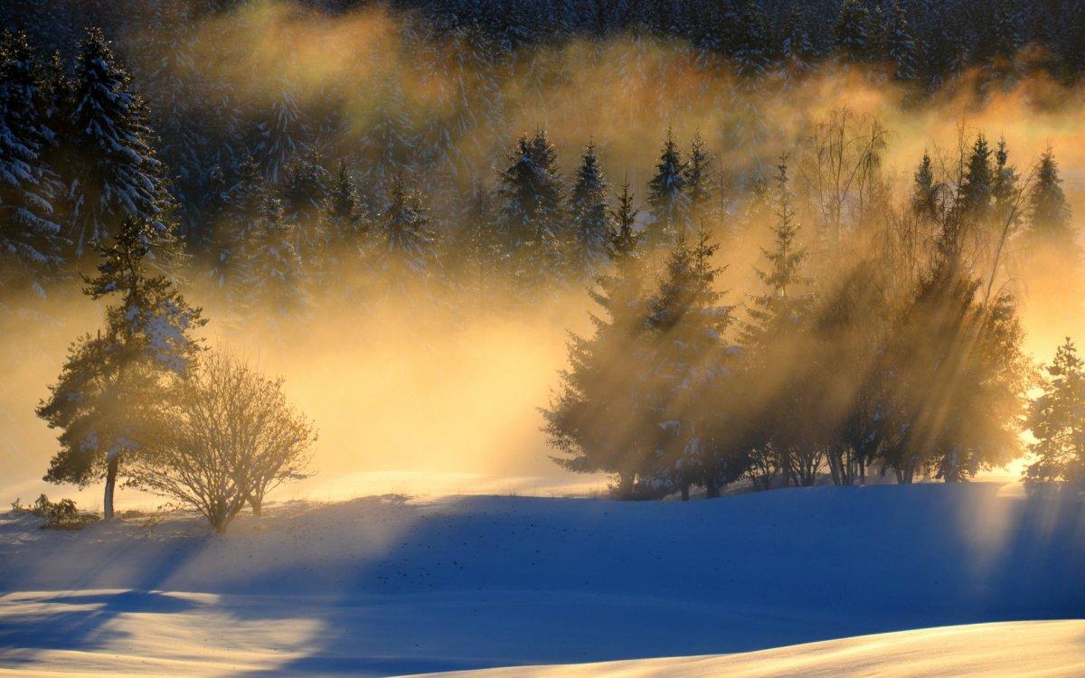 Beautiful winter photos 13
