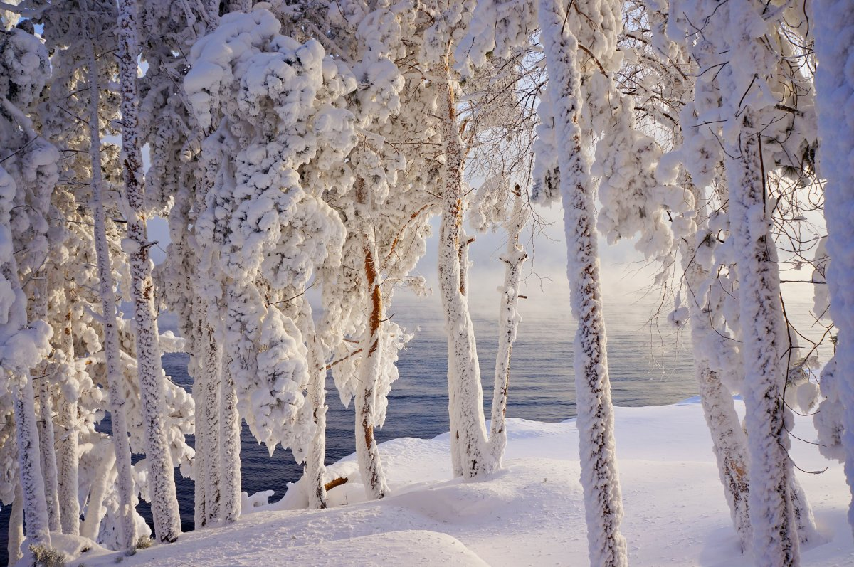 Beautiful winter photos 16