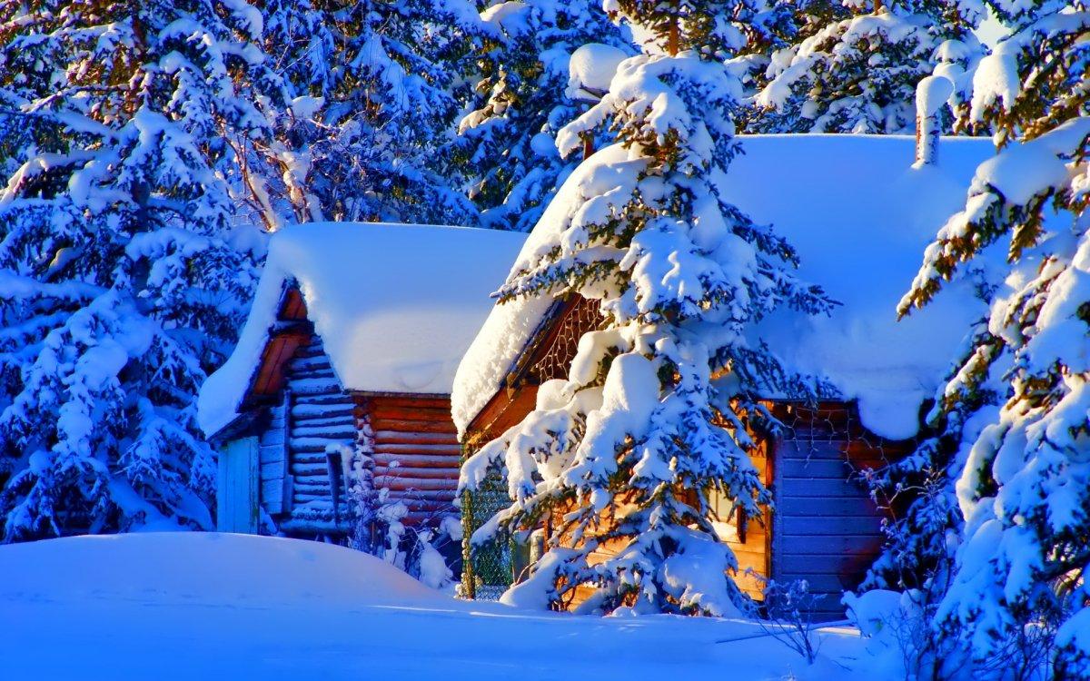 Beautiful winter photos 18