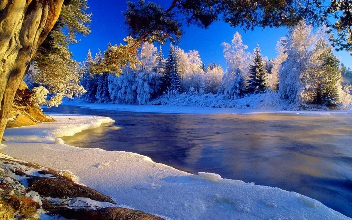 Beautiful winter photos 22