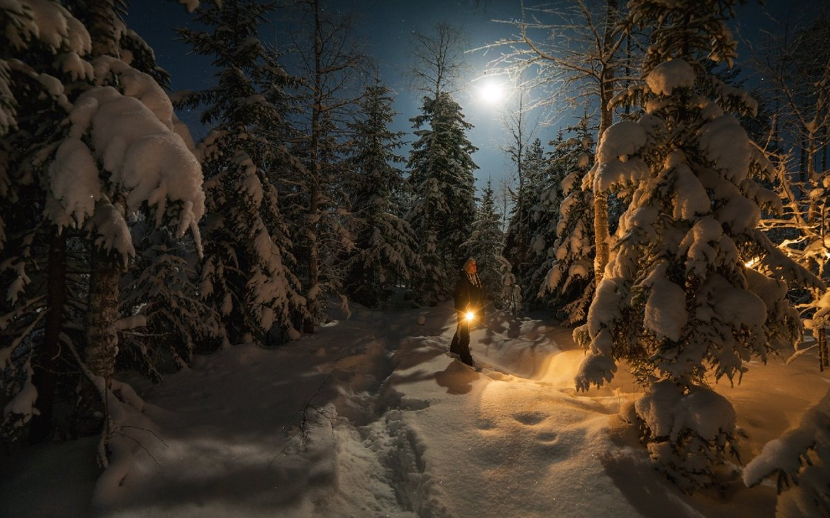 Beautiful winter photos 24