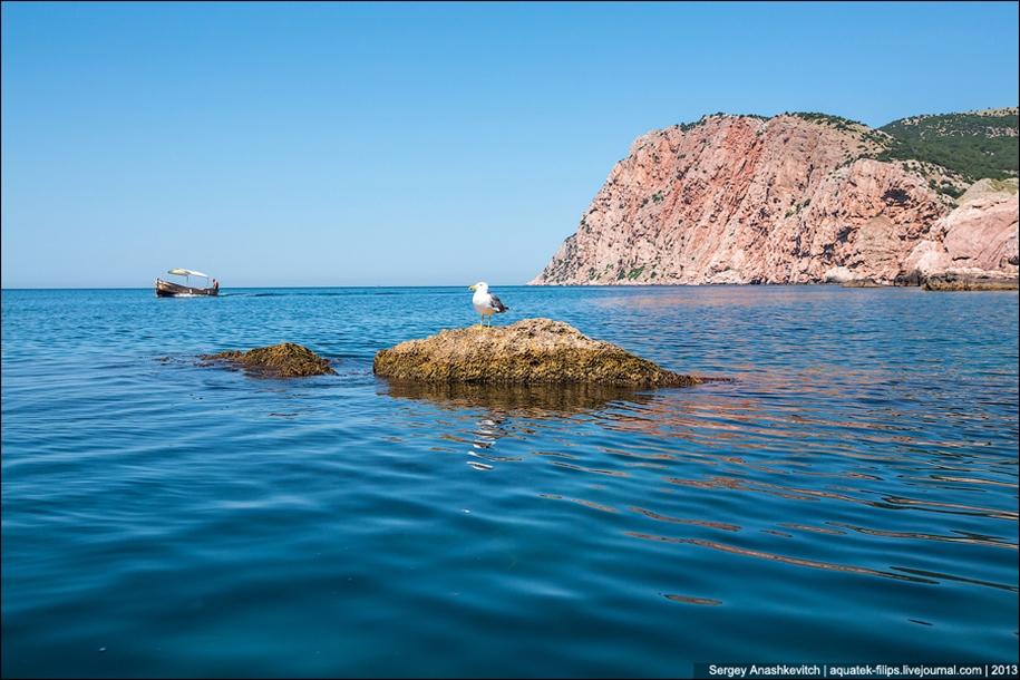 Crimean Seychelles 10