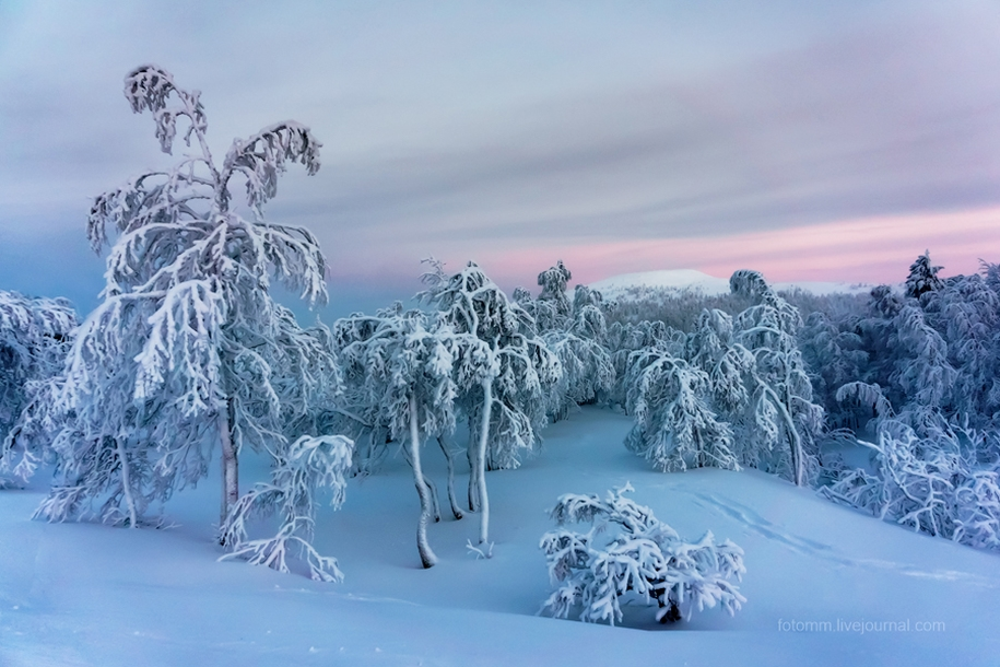 Finland. Snowy landscapes 01