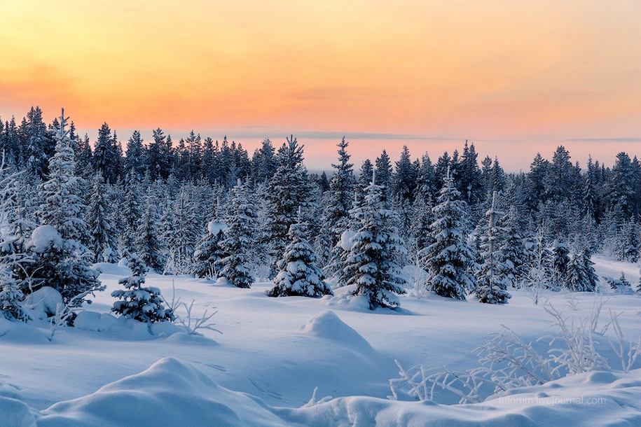 Finland. Snowy landscapes 03