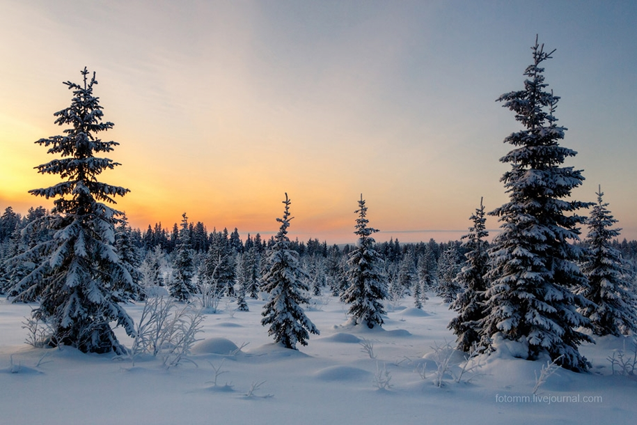 Finland. Snowy landscapes 05