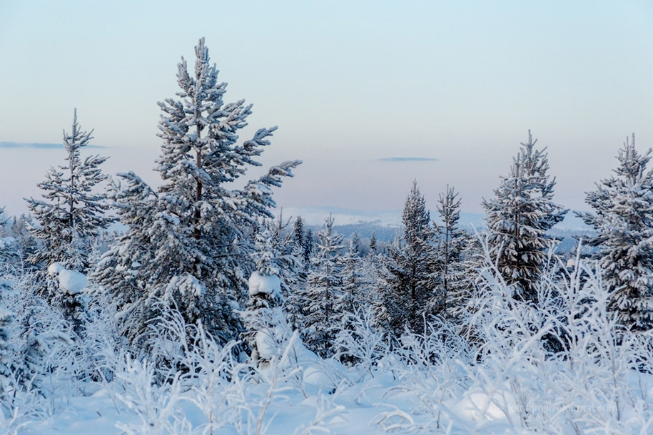 Finland. Snowy landscapes 06