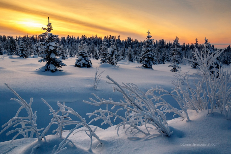 Finland. Snowy landscapes 07