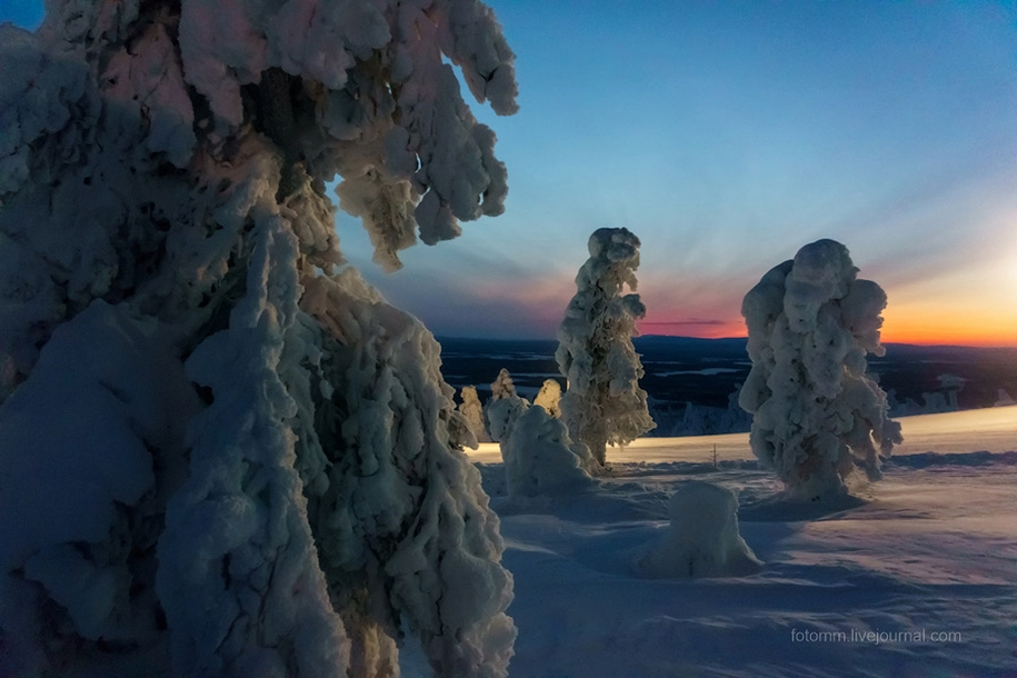 Finland. Snowy landscapes 08