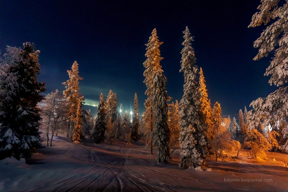 Finland. Snowy landscapes 14