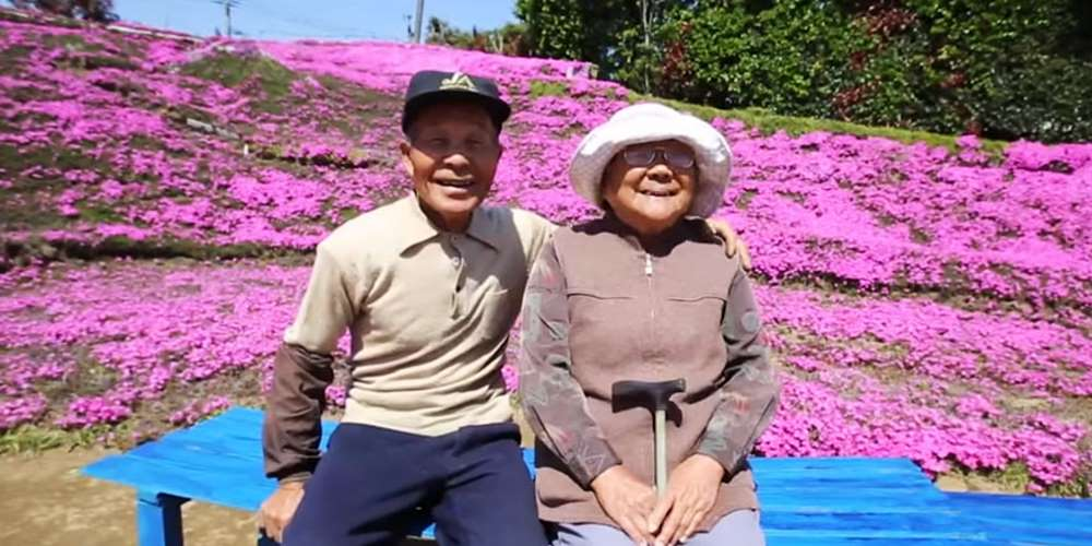 Loving husband for two years has planted thousands of flowers for his wife blinded 01