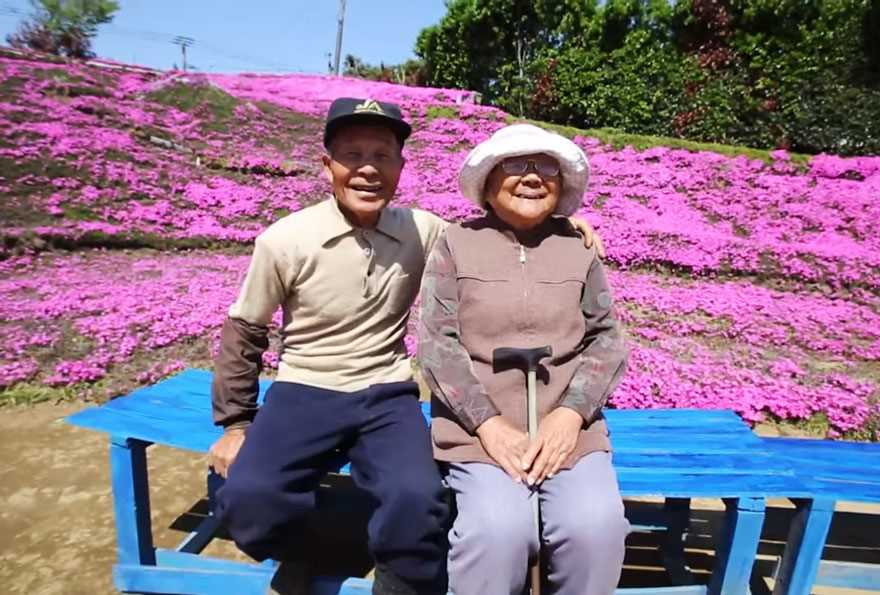 Loving husband for two years has planted thousands of flowers for his wife blinded 02