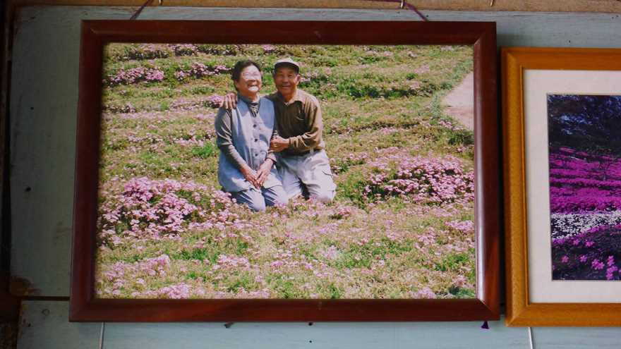 Loving husband for two years has planted thousands of flowers for his wife blinded 10