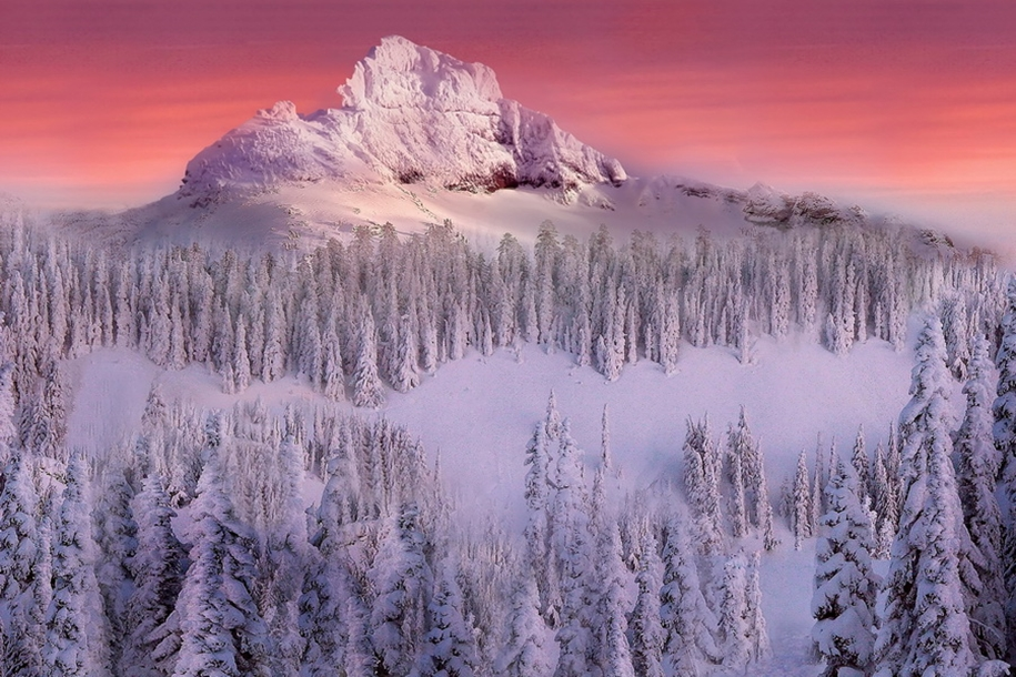 Mount_Rainier_National_Park_11