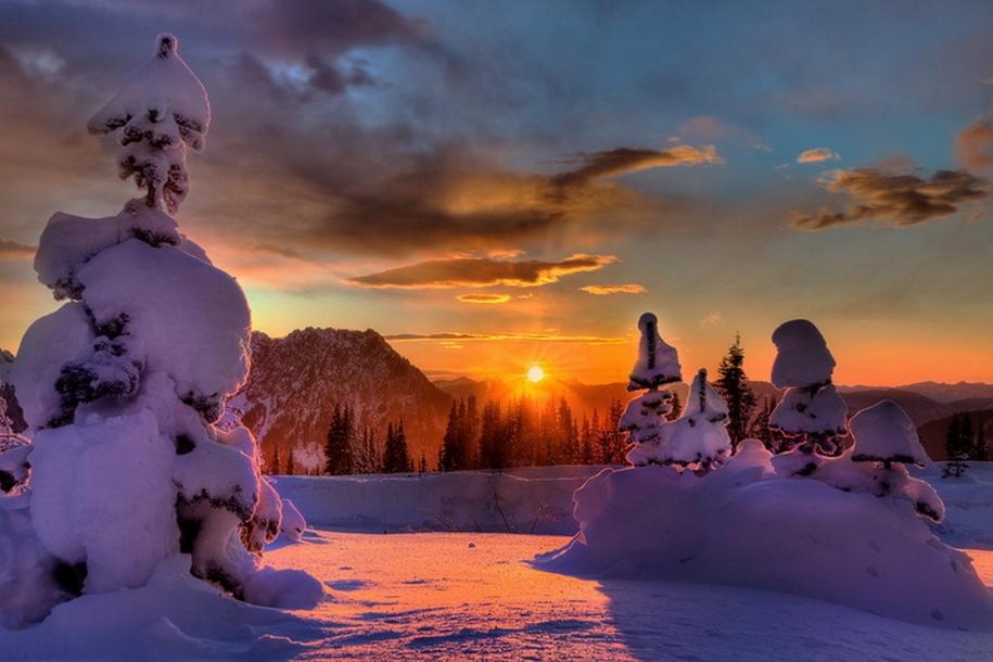 Mount_Rainier_National_Park_2