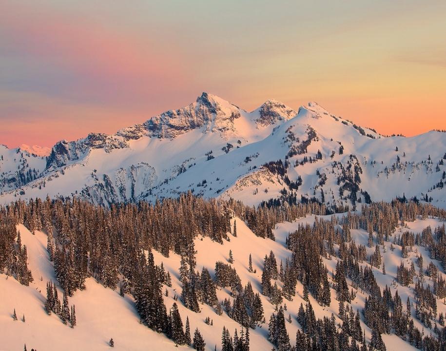 Mount_Rainier_National_Park_4