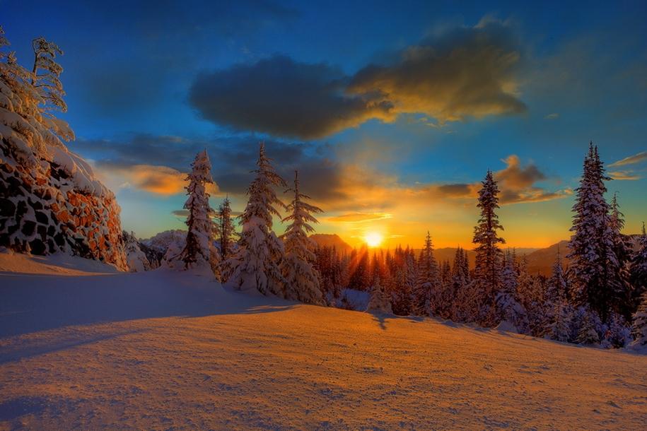 Mount_Rainier_National_Park_8