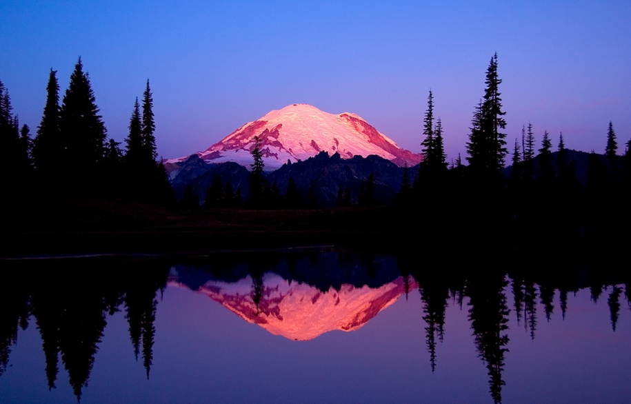 Mount_Rainier_National_Park_9