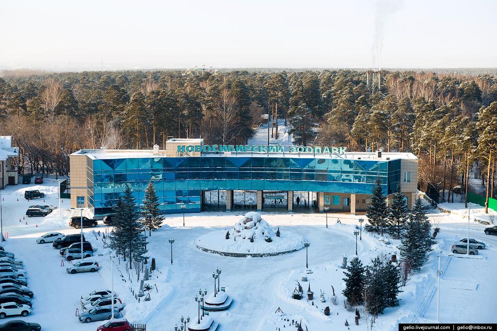 Novosibirsk. Winter 2016 36