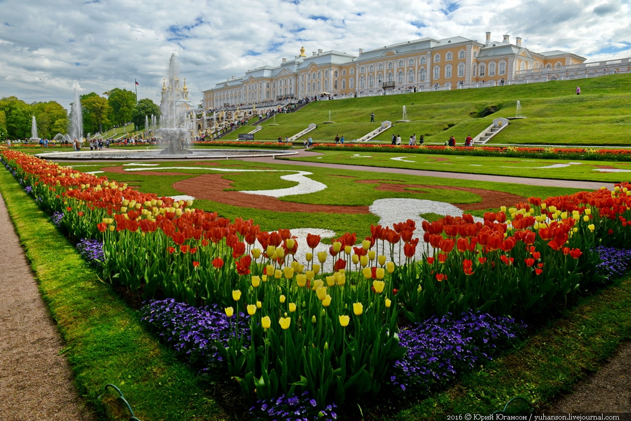 Peterhof. Little water. Many colors 00