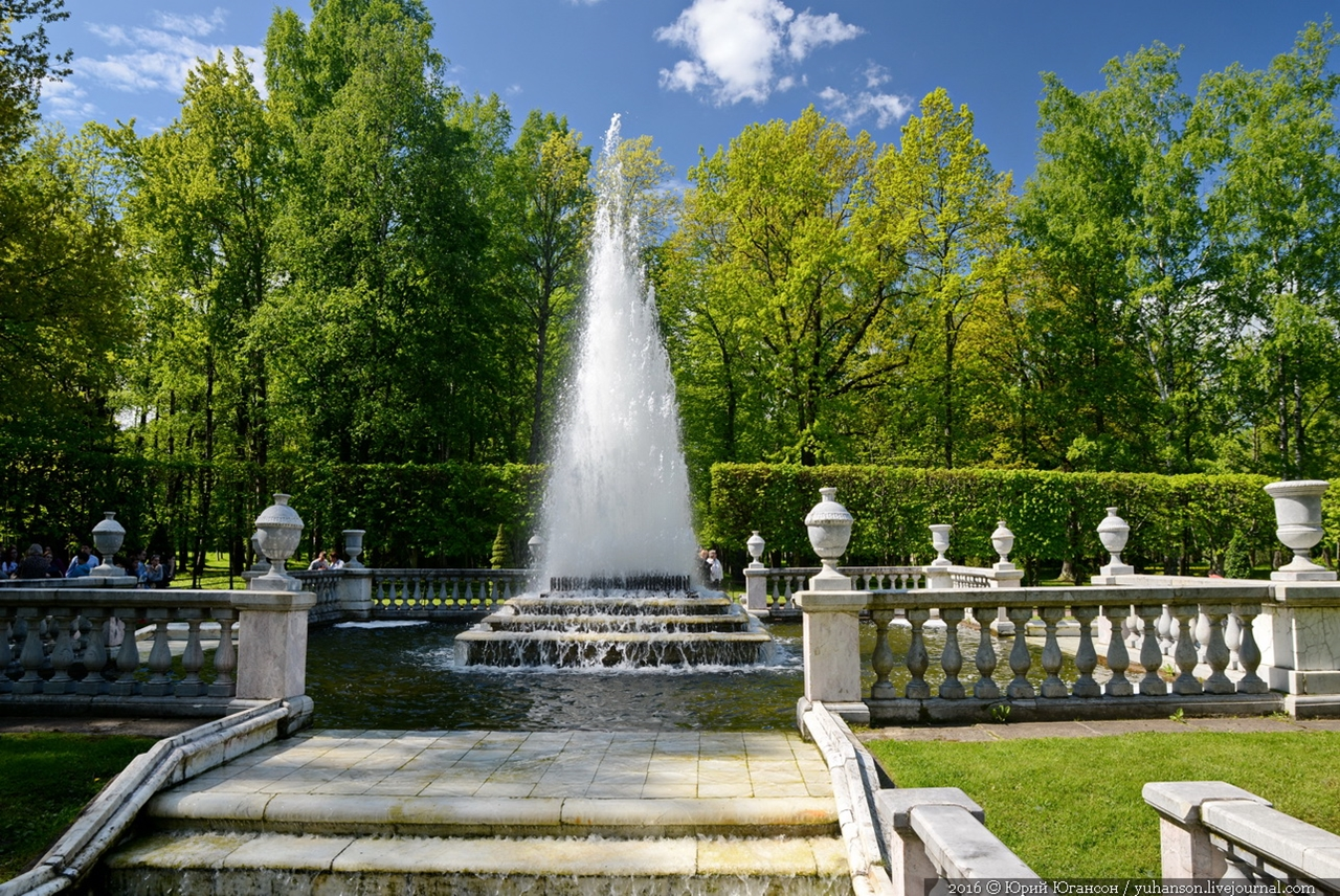 Peterhof. Little water. Many colors 17