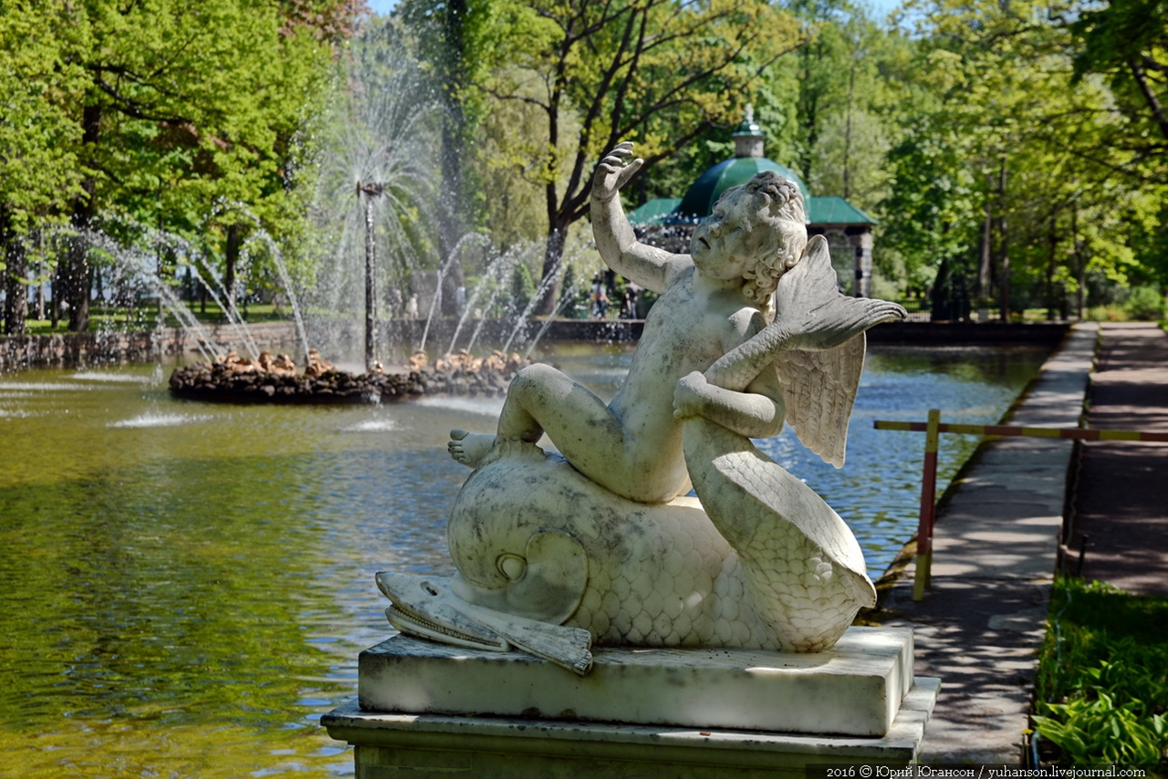 Peterhof. Little water. Many colors 23