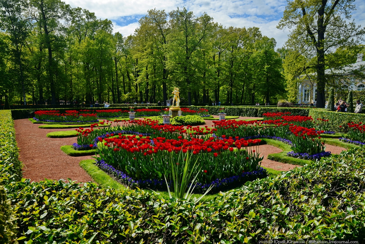 Peterhof. Little water. Many colors 29
