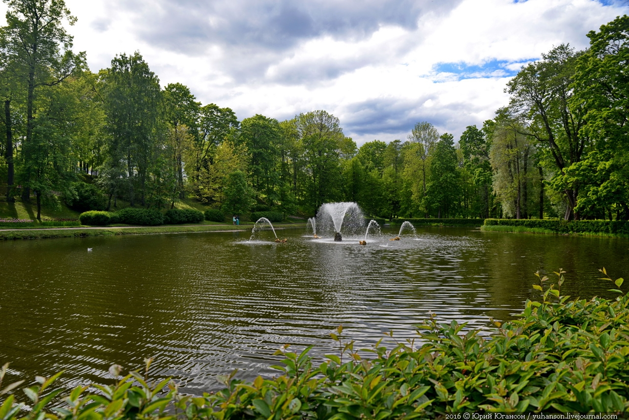 Peterhof. Little water. Many colors 41